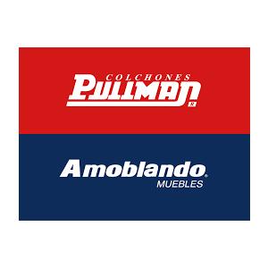 Descubre cómo Amoblando Pullman mejoró su rentabilidad con Beetrack